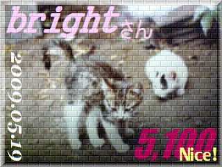 2009.nekomaro card 5,100 Nice! bright さん。.jpg
